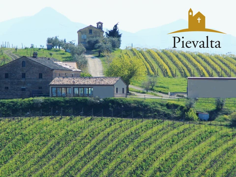 Pievalta, Pioneers of Biodynamic Wine